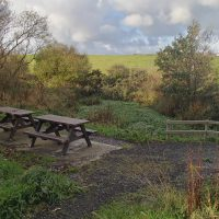 Picnic benches at the Cemaes Community Woodland pond